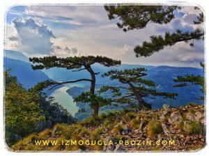Nacionalni park Tara - vidikovac Banjska stena